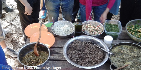 Foraging tour feast. Photo Aya Tager