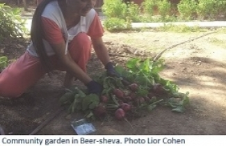 community garden in Beer Sheva Photo Lior Cohen