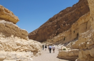 SPNI celebrates the 20th anniversary of the Israel National Trail