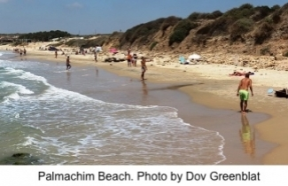 Palmachim Beach. Photo: Dov Greenblat