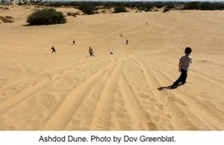 Ashdod Dunes. Photo: Dov Greenblat