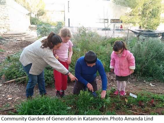 Community Garden of Generations in Katamonim. Photo Amanda Lind