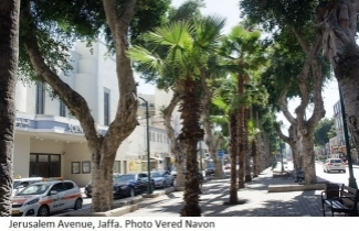 Jerusalem Avenue, Jaffa. Photo Vered Navon