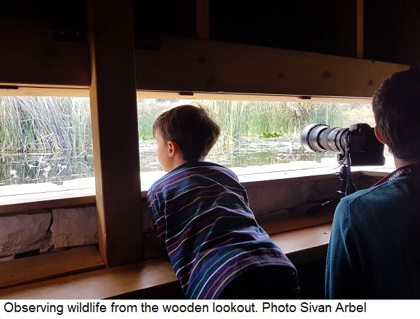 Observing wildlife from the wooden lookout. Photo Sivan Arbel