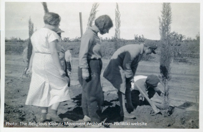 Photo The Religious Kibbutz Movement Archive from WikiPiki site