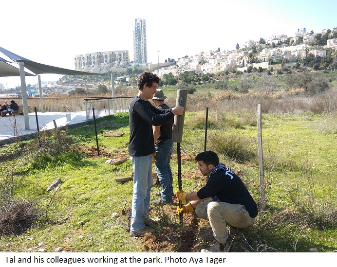 Tal and his colleagues working at the park. Photo Aya Tager