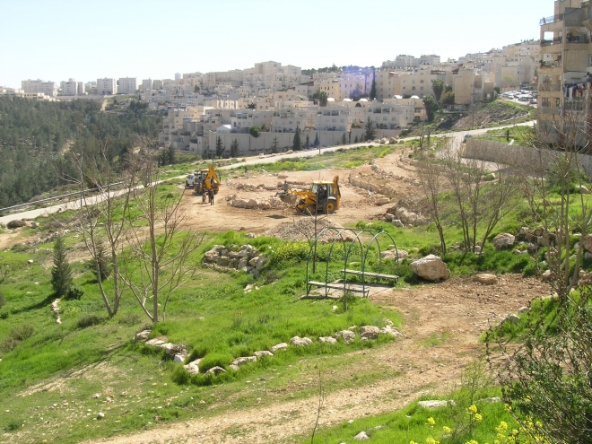 Jerusalem's Urban Nature