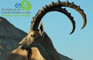 SPNI Celebrates 60 Years of Protecting Israeli Nature - 5774