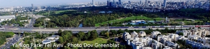 Yarkon Park, Tel Aviv Photo Dov Greenblat