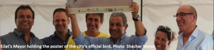 Eilat's Mayor holding the poster of the city's official bird. Photo Shachar Weiss
