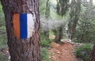 This Passover hike the Israel National Trail with SPNI! (Photo: Dov Greenblat)