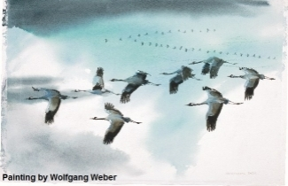 Artists for Nature Painting by Wolfgang Weber.